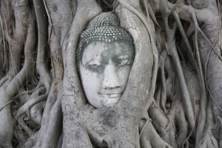 Ayutthaya_Thailand (37)