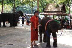 Ayutthaya_Thailand (63)