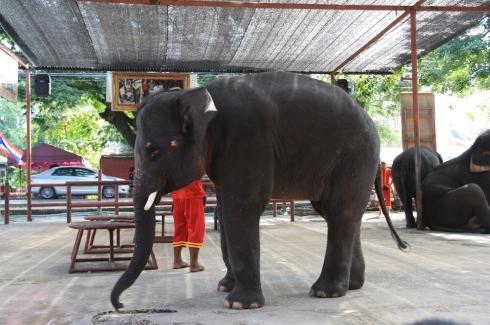 Ayutthaya_Thailand (65)