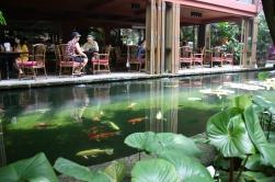 Pond beside the restaurant