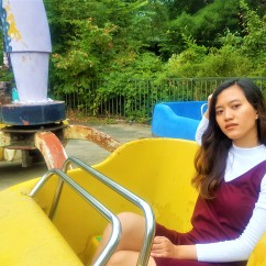 Yongma Land Seoul Amusement Park (15)